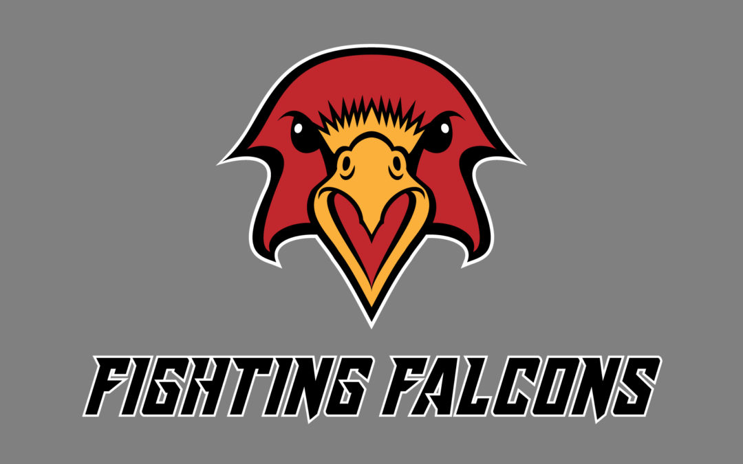Logo: Fighting Falcons